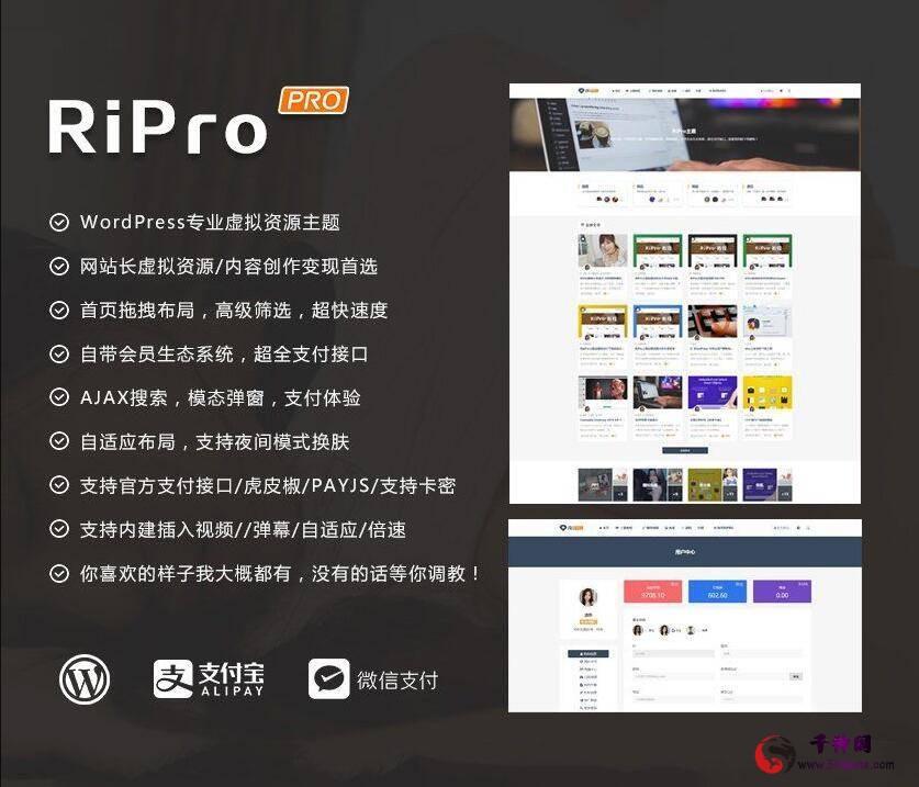 ripro8.7日主题破解版